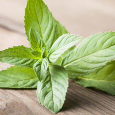invigorating-mint-basket